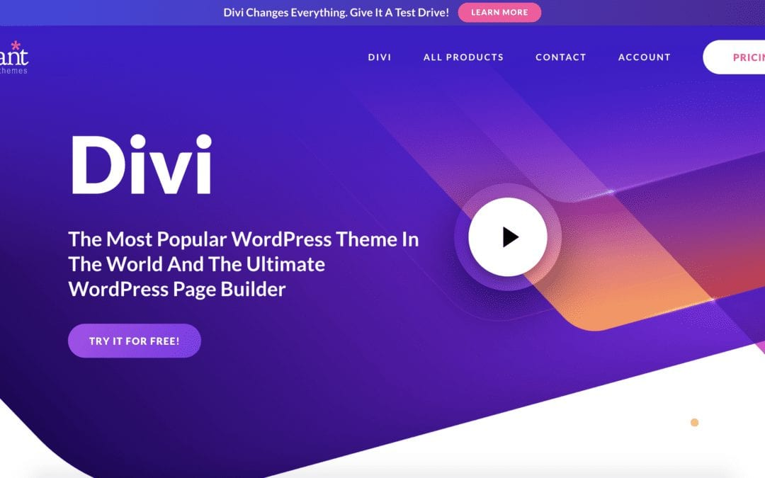 What is Divi?