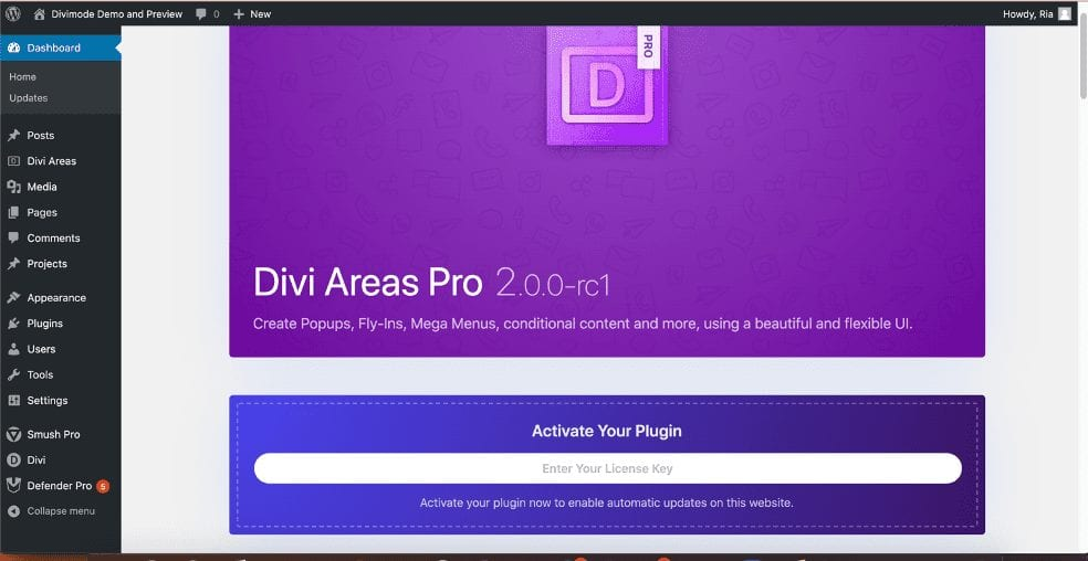 First Impression of Divi Areas Pro